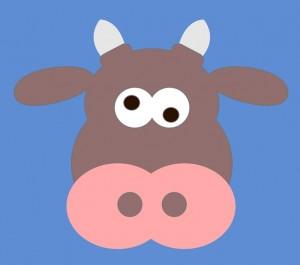 crazy koe